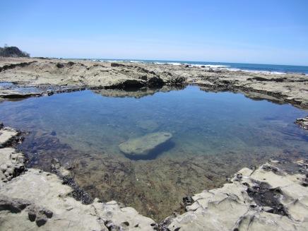 Mal-Pais-Tide-Pools-Costa-Rica